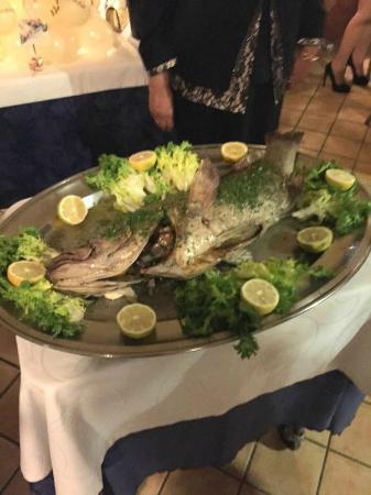 San Nicola, İtalya: che dire? se non di sentire il sapore fresco del mare ottimo