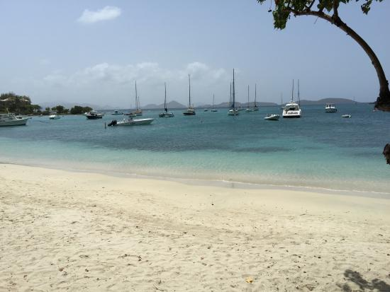Joe's Rum Hut: photo2.jpg