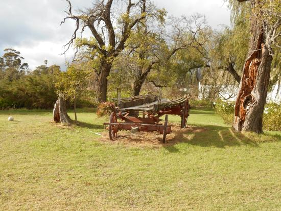 Whipstock Guest Farm: Beautiful old wagon