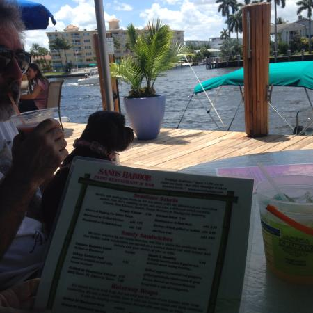 Sands Harbor Patio Restaurant: Our server brought a bowl of cold water for our pup!  She loved the view!
