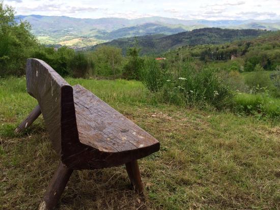 Vicchio, Itália: photo3.jpg