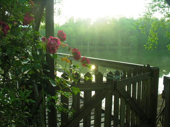 Country Charm Bed and Breakfast: The lake