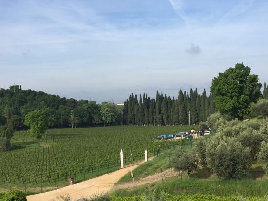 Landscape - Agriturismo Fontanelle Photo