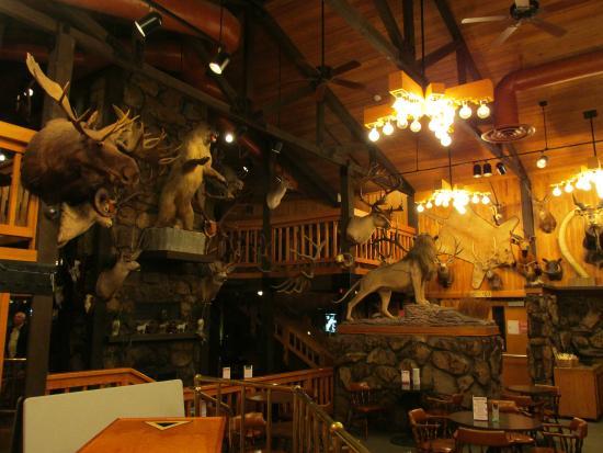 Days Inn Thermopolis: Bar