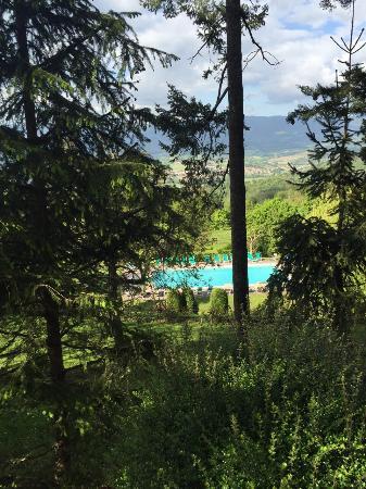 Vicchio, Italia: Swimming pool