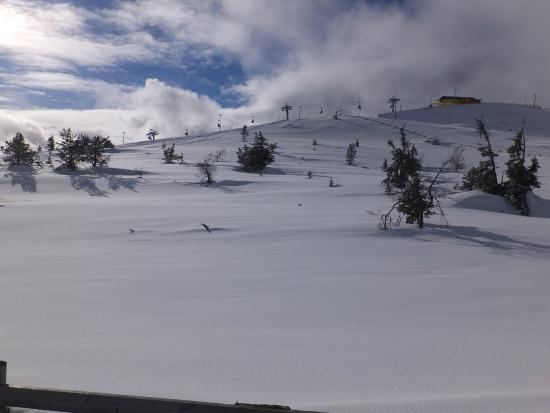 Levi Log Cabins: View of the heated chairlift beyond pristine off-piste powder snow.