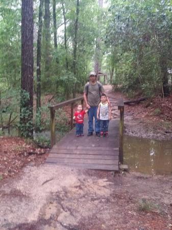 Lake Houston Wilderness Park: On peach tree trail.