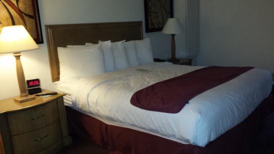 LivINN Hotel Minneapolis South / Burnsville : Room 2