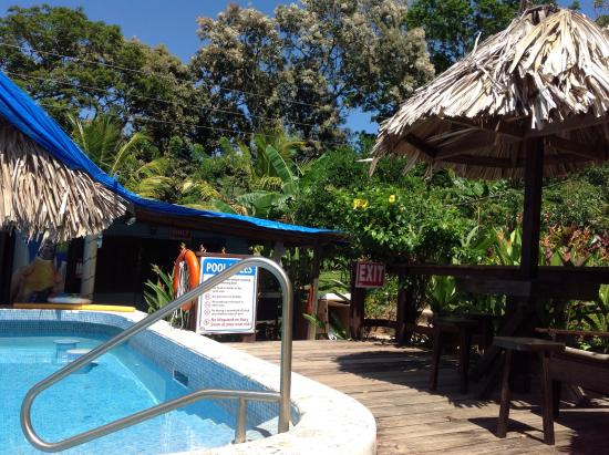 Guava Grove Villas and Resort: Fabulous pool with swim up bar and excellent meals