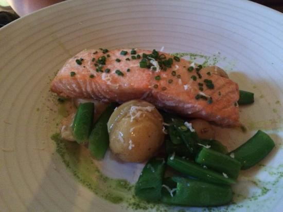 Pound Ridge, NY: Salmon
