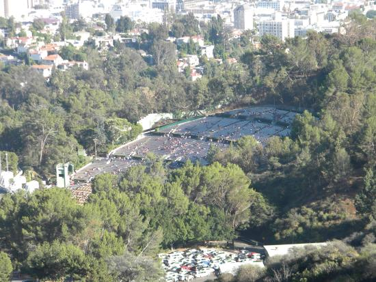 Rockin Hollywood Tours Tripadvisor