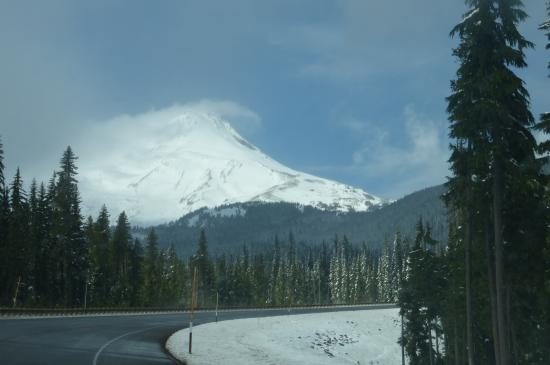 Whispering Woods Resort: Mount Hood on the way to Columbia Gorge wine country