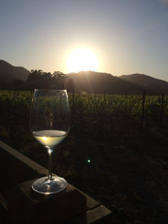 Our Favorite New Haven in Napa