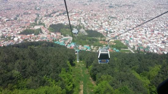 Mayıs ayında Uludağ ve kardelenler - Picture of Bursa ...