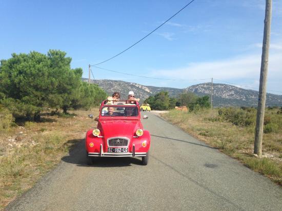 La Palme, France: Tour Di Vin sur le terroir de Fitou
