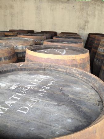 Ben Nevis Distillery: Barrels of whisky