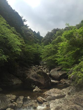 Nametoko Valley: photo4.jpg