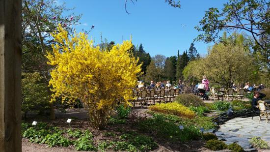 Botaniska Paviljongen