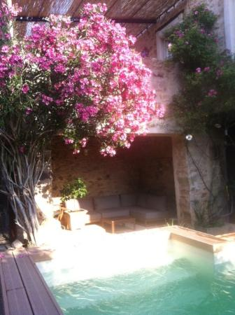 La Corbiere: Jardin