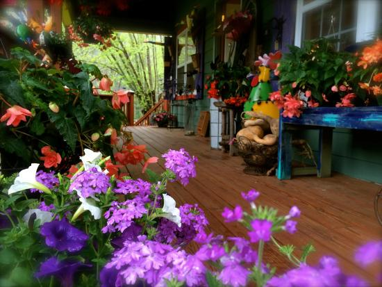 Slick Rock Country Emporium : Flowering baskets