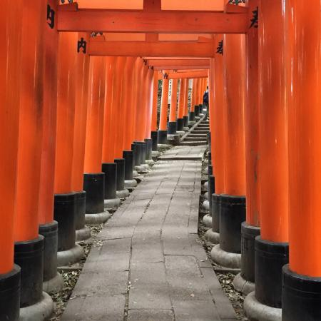 photo1.jpg - Picture of Fushimi Inari-taisha Shrine, Kyoto - TripAdvisor