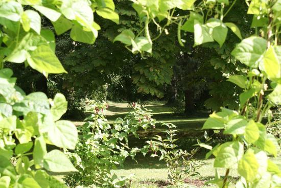 Saint-Erblon, Frankreich: Le parc