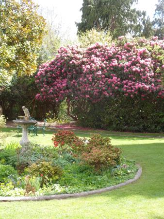 Flackley Ash Hotel and Restaurant : Garden
