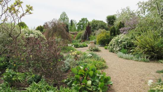 Denmans Garden: Garden view 1