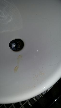 The Neo: Sink not cleaned...