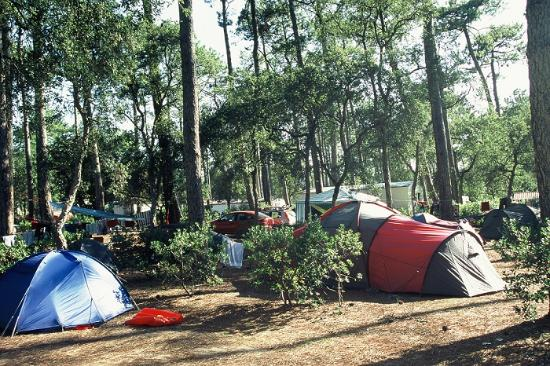 Camping Les Cigales: Emplacement
