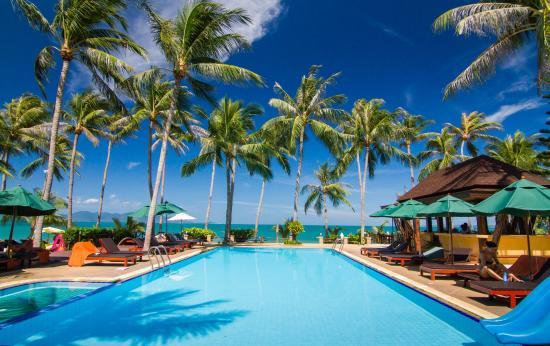 Coco Palm Beach Resort: Pool