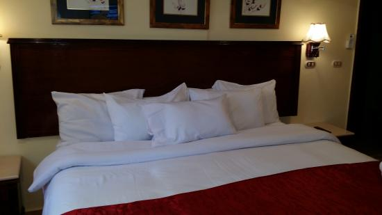 Alexandria Mediterranean Suites : We do like it so much and good value of money for this apartment