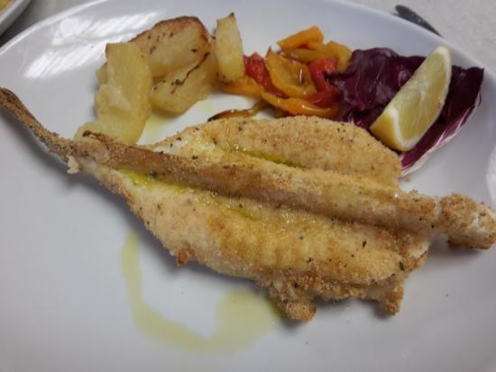 Hotel Adriatica: pescatrice
