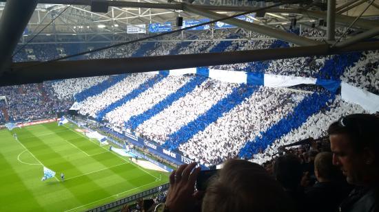 Stadionhopper Mark Mauderer: Im Stadion