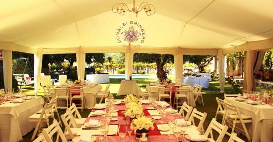 Conalbi Grinberg Casa Vinicola: Wedding party