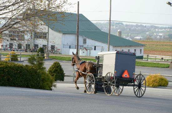 Churchtown Inn Bed and Breakfast: Living Among the Amish is Special