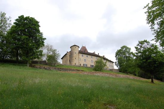 Chateau De Marigna: chateau en contrebas