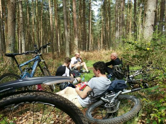 Thetford Forest Park: munch time