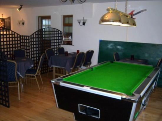 COMPETITION POOL TABLE Picture Of Eagles Guest House Wexford - Competition pool table