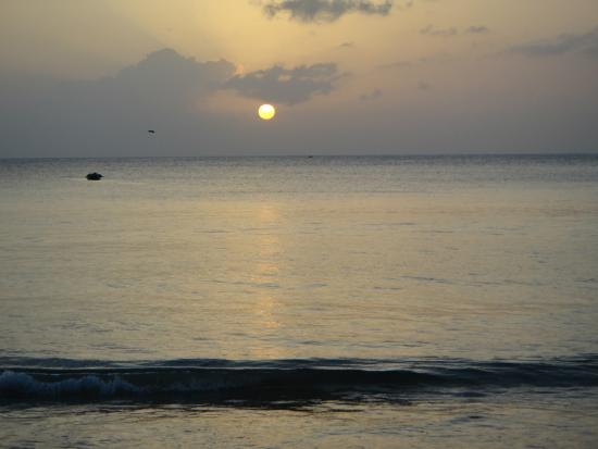 Fish Tobago Tours: Typical sunset