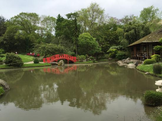 Beautiful day in japanese garden with beautiful girl for Jardin japonais toulouse