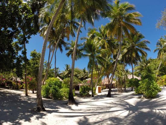 Landscape - Sheraton Maldives Full Moon Resort & Spa Photo