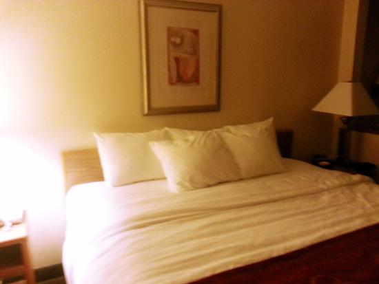 Suburban Extended Stay Hotel: Bed Area