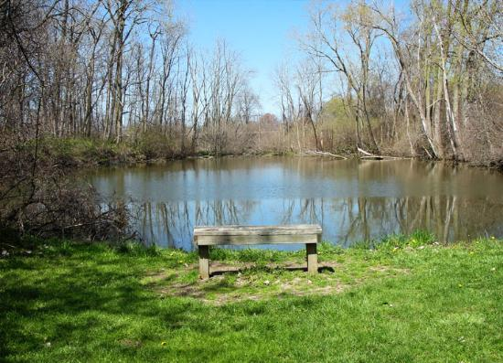 Huron, OH: Dildine Pond on North Meadow Trail