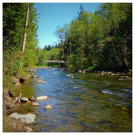 Mt Hood Village RV Resort: Salmon River Trail
