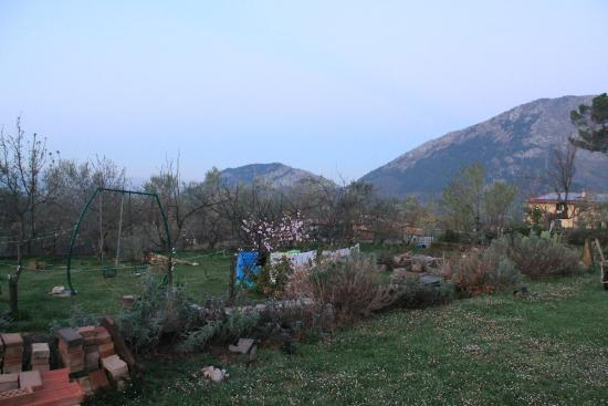 Italy Farm Stay: View from the outside area