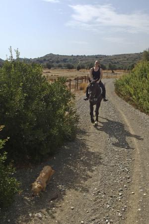 Fivos Horse Riding Club