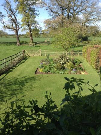 Cotton Farm: The beautiful garden