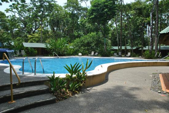 piscine adultes picture of laguna lodge tortuguero tortuguero tripadvisor. Black Bedroom Furniture Sets. Home Design Ideas