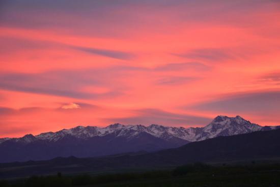 Estancia La Alejandra: Vista Cordillera de Los Andes
